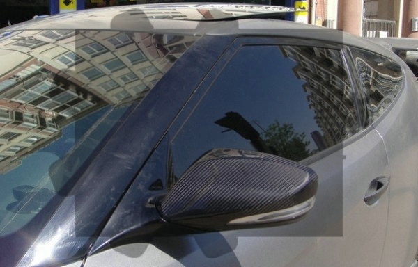 Veloster Mirror Cover